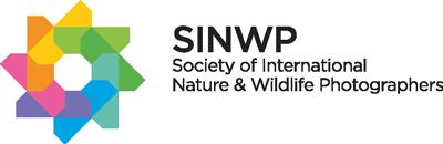 SINWP
