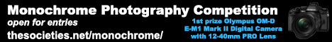 Monochrome Photo Comp