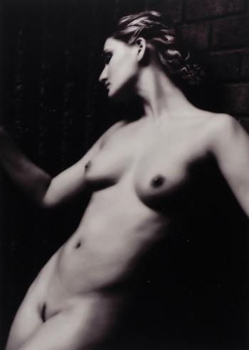 Faye Yerbury