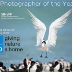 SINWP Bird Photographer of the Year Competition 2020