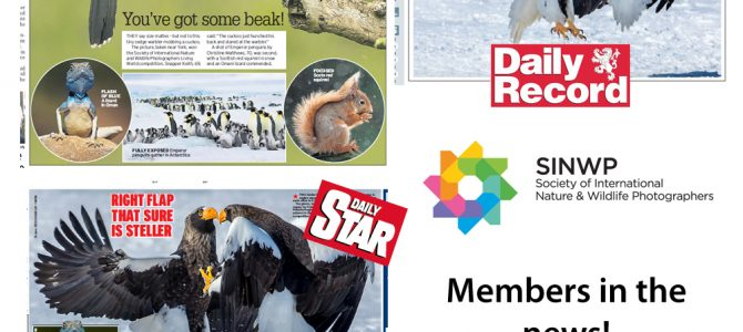 Read all about it – Members in the news!