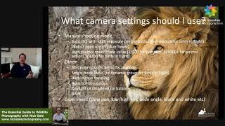 The Essential Guide to Wildlife Photography with Nick Dale