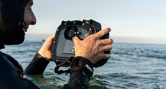 Hasselblad Collaborates With Aquatech To Create Underwater Solution For X1D II 50C