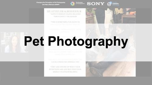 Webinars on Pet Photography