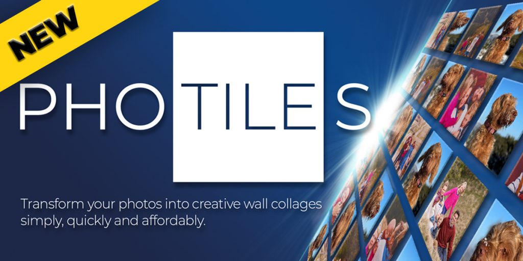 One Vision Imaging Photiles